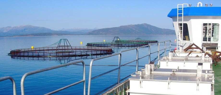 acuicultura-Aquaculture