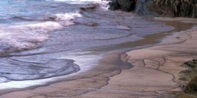 Derrames de petróleo y el ecosistema marino